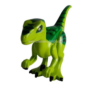 Dinosaur, Raptor / Velociraptor with Green Back